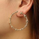 Nice Alloy Women's Fashion Earrings (137178069)