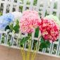 Schöne Stoff Blume (In Einem Stück Verkauft) (128066680)