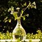 Pretty Glass Vase (128035741)